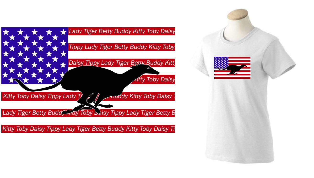 PT-5 - PERSONALIZED Flag Ladies T-Shirt